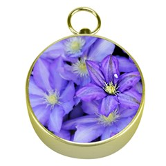 Purple Wildflowers For Fms Gold Compass by FunWithFibro