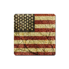 Vinatge American Roots Magnet (square) by dflcprints