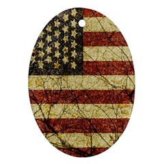 Vinatge American Roots Oval Ornament (two Sides) by dflcprints