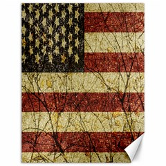 Vinatge American Roots Canvas 12  X 16  (unframed) by dflcprints