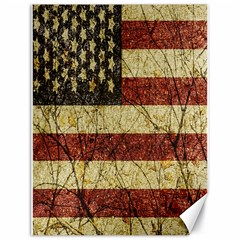 Vinatge American Roots Canvas 18  X 24  (unframed) by dflcprints