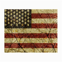 Vinatge American Roots Glasses Cloth (small, Two Sided) by dflcprints