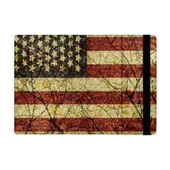 Vinatge American Roots Apple Ipad Mini Flip Case by dflcprints