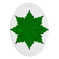 Decorative Ornament Isolated Plants Oval Ornament by dflcprints