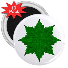 Decorative Ornament Isolated Plants 3  Button Magnet (10 Pack) by dflcprints