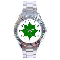 Decorative Ornament Isolated Plants Stainless Steel Watch by dflcprints