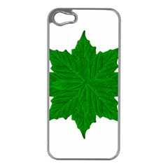 Decorative Ornament Isolated Plants Apple Iphone 5 Case (silver) by dflcprints