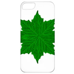 Decorative Ornament Isolated Plants Apple Iphone 5 Classic Hardshell Case by dflcprints