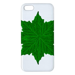 Decorative Ornament Isolated Plants Iphone 5s Premium Hardshell Case by dflcprints