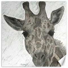 Giraffe Canvas 16  X 16  (unframed) by sdunleveyartwork