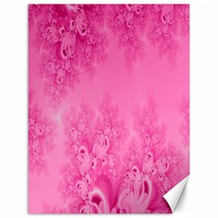 Soft Pink Frost Of Morning Fractal Canvas 12  X 16  (unframed) by Artist4God