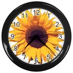 Picture_162 Wall Clock (Black)