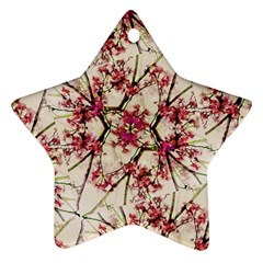Red Deco Geometric Nature Collage Floral Motif Star Ornament by dflcprints