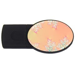 Peach Spring Frost On Flowers Fractal 2gb Usb Flash Drive (oval) by Artist4God