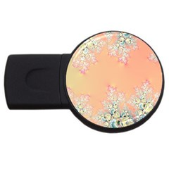 Peach Spring Frost On Flowers Fractal 4gb Usb Flash Drive (round)