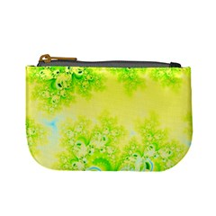 Sunny Spring Frost Fractal Coin Change Purse by Artist4God