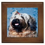 Briard Framed Tile