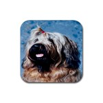 Briard Rubber Square Coaster (4 pack)