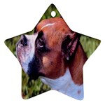 boxer Ornament (Star)