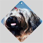 Briard Car Window Sign