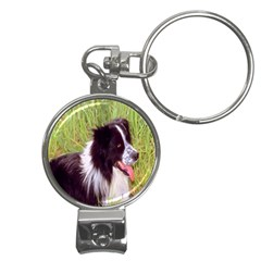 border collie Nail Clippers Key Chain from ArtsNow.com Front