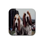 basset hounds two Rubber Square Coaster (4 pack)