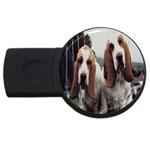 basset hounds two USB Flash Drive Round (1 GB)