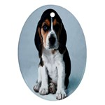 Basset hound puppy Ornament (Oval)