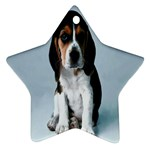 Basset hound puppy Ornament (Star)