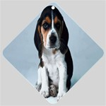 Basset hound puppy Car Window Sign