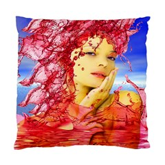 Tears Of Blood Cushion Case (two Sided)  by icarusismartdesigns