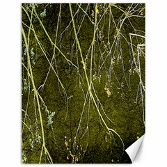 Wild Nature Collage Print Canvas 12  X 16  (unframed) by dflcprints