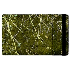 Wild Nature Collage Print Apple Ipad 3/4 Flip Case by dflcprints