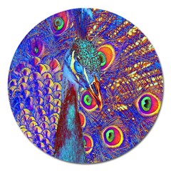 Peacock Magnet 5  (round) by icarusismartdesigns