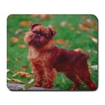 Brussels griffon Large Mousepad