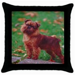 Brussels griffon Throw Pillow Case (Black)