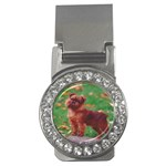 Brussels griffon Money Clip (CZ)