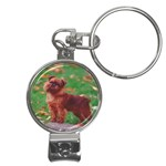Brussels griffon Nail Clippers Key Chain