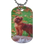Brussels griffon Dog Tag (One Side)