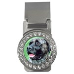 bull mastiff Money Clip (CZ)