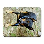 doberman pinscher Small Mousepad