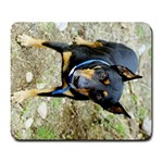 doberman pinscher Large Mousepad