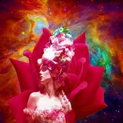 Star Flower Canvas 12  X 12  (unframed) by icarusismartdesigns