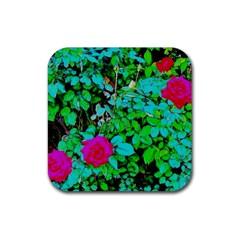 Rose Bush Drink Coaster (square) by sirhowardlee