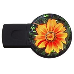Flower In A Parking Lot 2gb Usb Flash Drive (round) by sirhowardlee