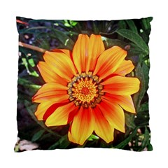 Flower In A Parking Lot Cushion Case (single Sided)  by sirhowardlee
