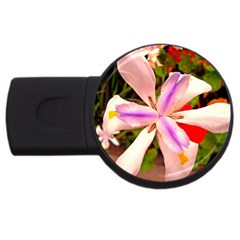 African Iris 4gb Usb Flash Drive (round)
