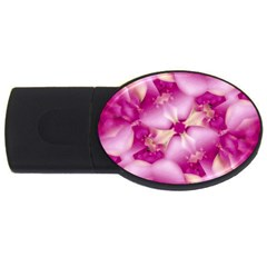 Beauty Pink Abstract Design 2gb Usb Flash Drive (oval) by dflcprints