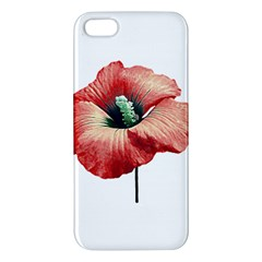 Your Flower Perfume Apple Iphone 5 Premium Hardshell Case by dflcprints