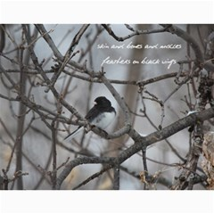 2015 Calendar By Megan Pennington   Wall Calendar 11  X 8 5  (12 Months)   S7ukyy4d5k6x   Www Artscow Com Month